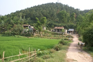 A view across Mr Pham Dung's farm to their community