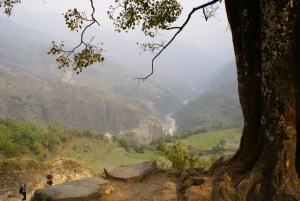 Deforestation is a big issue around Bahundanda village