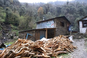 "The hunger for firewood to feed trekkers, keep them warm, and these days to provide hot showers. We can't keep taking this for granted. Perhaps the wisdom of the Pakha Sukjai village leaders is needed here (see post from 20 February, 2007, ""Lena's 18th birthday"") with trekkers required to plant a tree for every day they are in Nepal. I don't just mean giving money for tree planting, I mean being required to pay for and plant trees in the local communities that they trek through."