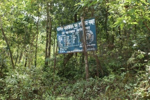 Community forestry project, Lalitupur village